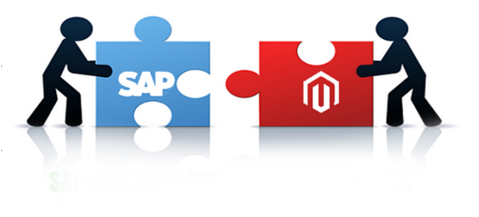 We built sophisticated Magento websites which integrate with SAP, MS Dynamics C5 and other ERP systems